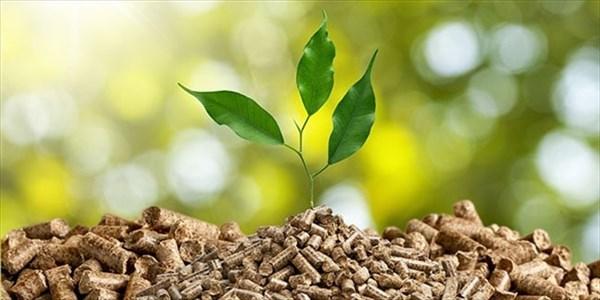 Marco Sperandio - Bioeconomia e biomasse